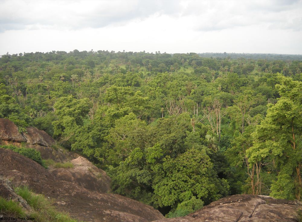 More about Ghana protected areas