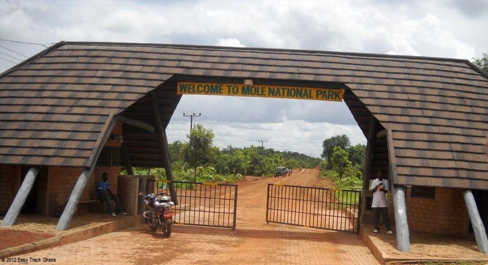 Image result for Moli National Park ghana